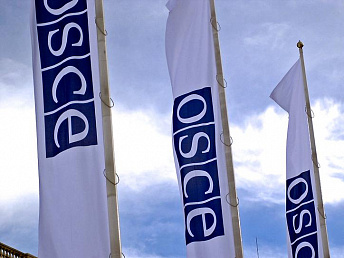 OSCE Minks Group concerned over consequences of Ramil Safarov's pardoning